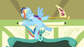 Rainbow Dash waving a flag S4E05.png