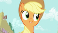 "Applejack ""you're right"" S6E10.png"