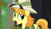 Daring Do collector has second thoughts S4E22.png