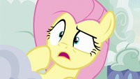 Fluttershy aghast at what she sees S6E11