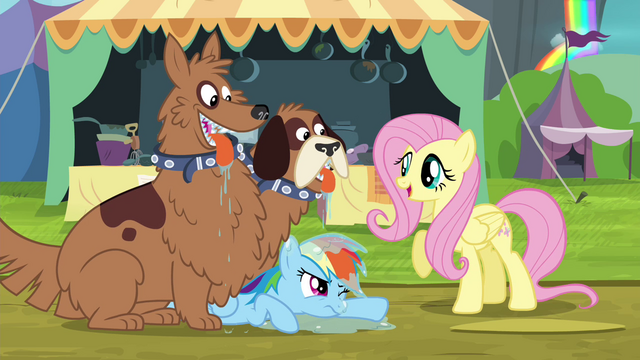 File:Fluttershy calls orthros affectionate S4E22.png