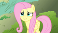 "Fluttershy ""don't you look so content"" S4E23.png"