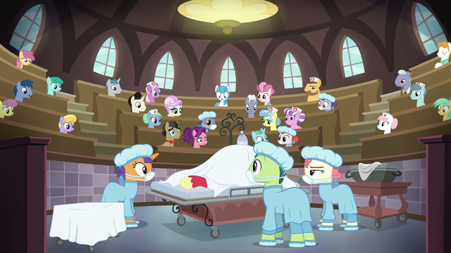 File:Full view of Ponyville Hospital surgery theater S6E23.png