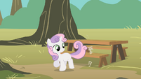 Sweetie Belle sweeping with tail S01E18