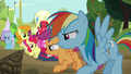 Rainbow and Scootaloo ready to race S5E17.png