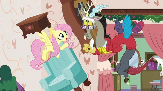"""File:Fluttershy """"what's discord without a little chaos?"""" S7E12.png"""
