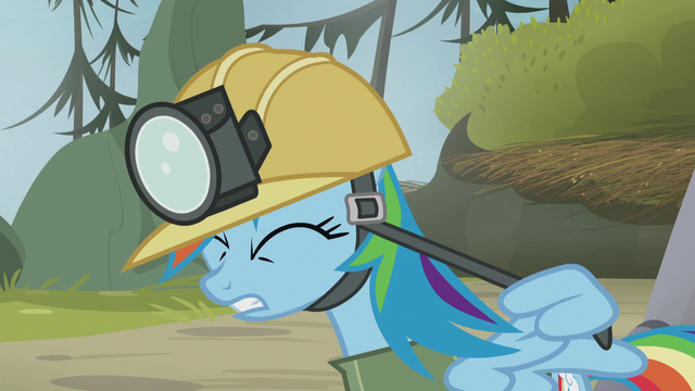 File:Rainbow tightens the strap with her wing S5E8.png