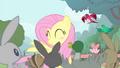 Fluttershy blushing S4E14.png