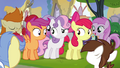 Cutie Mark Crusaders unsure S4E15.png