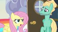 "Fluttershy ""you can't just fly in"" S6E11"