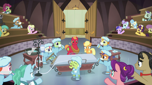 File:Ponies raise their hooves as Granny begins another story S6E23.png