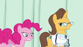Pinkie Pie animation error cut leg S2E16.png