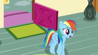 "Rainbow Dash ""I needed your help"" S6E15"