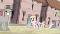 "Pink mare ""Welcome"" S5E1"