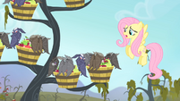 Fluttershy 'I really, really, really hate to do this to you' S4E07