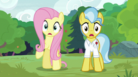 Fluttershy and Dr. Fauna gasp in shock S7E5