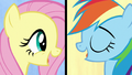 "Fluttershy and Rainbow ""we've got quirks"" S7E14.png"