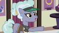 "Jeweler Pony ""why in Equestria would"" S7E2.png"