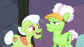 "Granny Smith ""we were just usin' it to help"" S3E8.png"