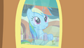 Rainbow Dash looking out train window S4E24.png