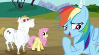 Rainbow correcting herself S4E10