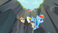 Rainbow Dash about to start race S2E7
