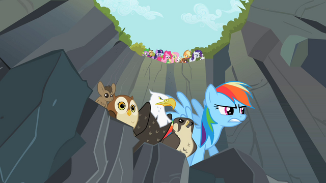 File:Rainbow Dash about to start race S2E7.png