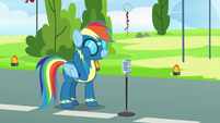 Rainbow Dash putting her goggles on S7E7