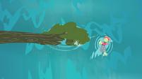 Granny Smith swimming beside the fallen tree S4E20