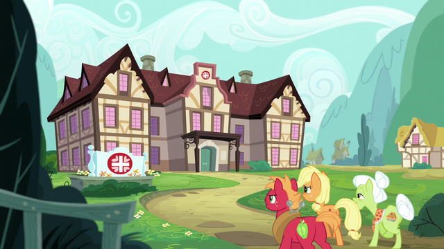 File:AJ, Big Mac, and Granny approach the Ponyville Hospital S6E23.png
