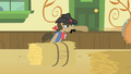 Sheriff Silverstar throws another pie S1E21.png