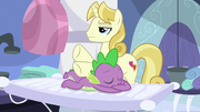 Spa pony giving Spike a masage S5E10