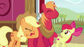 Applejack groans and face-hoofs S6E23.png