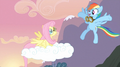 Rainbow Dash congratulating Fluttershy S02E22.png