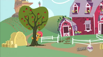 Babs Seed about to shake an apple tree S3E4
