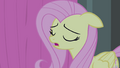 Fluttershy scatting S4E14.png