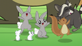 Animals cheering for Fluttershy S7E5.png
