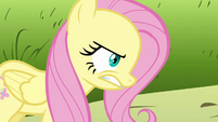 Fluttershy breathing heavily after Rarity and Pinkie run away S2E19