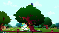 Luna carries Fluttershy to the top of a tree S5E13