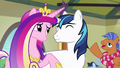 Spearhead greets Cadance and Shining in background S7E3.png