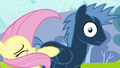Fluttershy accidentally hitting Star Hunter S2E22.png