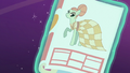 Model pony in a magazine S6E21.png