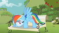 "Rainbow Dash ""You got it"" S2E03.png"