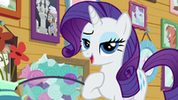 "Rarity ""how professional"" S7E6"