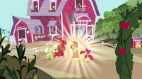 Applejack rediscovers her destiny S03E13