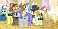 Paparazzi ponies