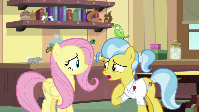 """File:Dr. Fauna """"I wonder why they chose to flock"""" S7E5.png"""