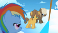 Filly Rainbow looking at the colts S1E23.png