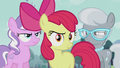 Apple Bloom in front of Diamond Tiara and Silver Spoon S5E18.png