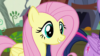 "Fluttershy ""I'm here, too"" S5E23"